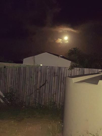 My backyard moon